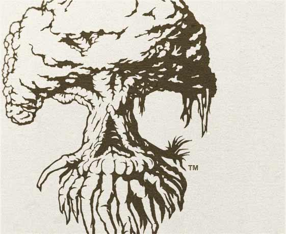 Essential Evolve Logo